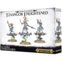 Tzaangor Enlightened - Warhammer - Age of Sigmar