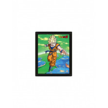 Cuadro 3D - Dragon Ball Z